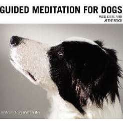 Satori Dog Institute - Guided Meditation for Dogs mp3 download