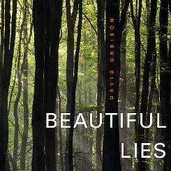 David Orbison - Beautiful Lies mp3 download
